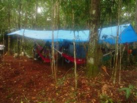 Camping Selvagem