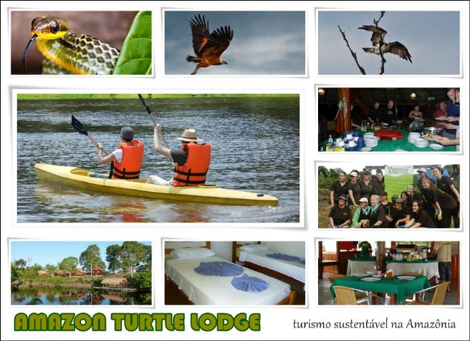 Amazon Turtle Lodge - Turismo Sustentável