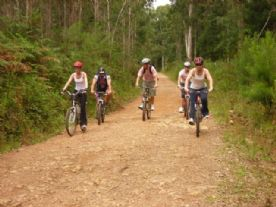 Bike Tour Caracol...
