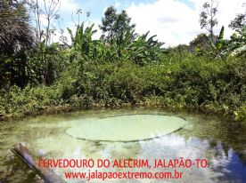 Fervedouro do Alecrim.