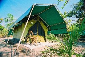 Tenda - Safari Camp